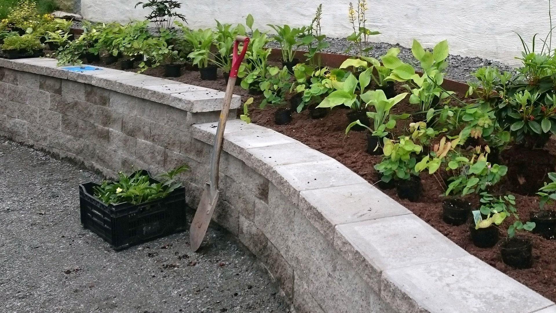 trädgårdsanläggning lenas trädgård